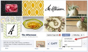 The Afternoon Facebook